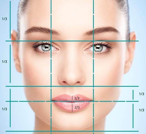 пропорции и симметрия лица, губ | Healthface