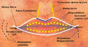 строение губ - увеличить губы гелем